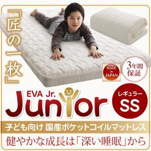 子どもの睡眠環境を考えた日本製安眠マットレス抗菌・薄型・軽量【EVA】エヴァジュニア国産ポケットコイルレギュラーセミシングル【あす楽】