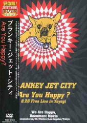 【送料無料選択可!】Are You Happy? / BLANKEY JET CITY
