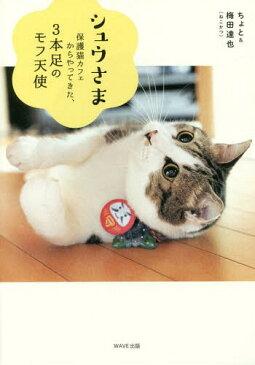 シュウさま 保護猫カフェからやってきた、3本足のモフ天使[本/雑誌] / ちょと/著 梅田達也/著