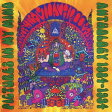 ピクチャーズ・イン・マイ・マインド: アンソロジー1984-1994[CD] / マジック・マッシュルーム・バンド