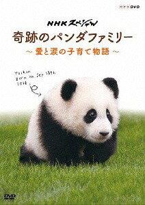 NHKスペシャル 奇跡のパンダファミリー 〜愛と涙の子育て物語〜[DVD] / ドキュメンタリー