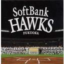 【送料無料選択可!】2005福岡ソフトバンクスホークス / ホーク・ウイングス