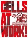 はたらく細胞 1 [CD付完全生産限定版][DVD] / アニメ