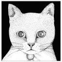 ALL YOU NEED IS CAT 〜猫こそはすべて[CD] / テンテンコ