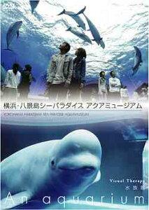 【送料無料選択可!】NHKDVD 水族館 ~An Aquarium~ 横浜・八景島シーパラダイス アクアミュー...