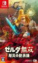ゼルダ無双 厄災の黙示録[Nintendo Switch] / ゲーム