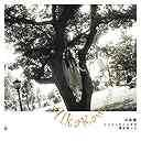 ジェリービーンズの森/昔出会った風[CD] / 川島愛華