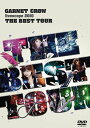 GARNET CROW livescope 2010 〜THE BEST TOUR〜[DVD] /  ...