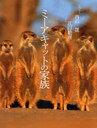 【送料無料選択可!】ミーアキャットの家族 / そうえんしゃ・写真のえほん 9 (児童書) / 内山 ...