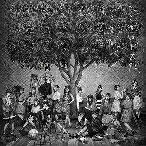 【送料無料選択可!】未定 (6th アルバム) [2CD/Type B][CD] / AKB48