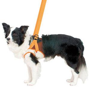 P 老犬介護用 歩行補助ハーネス 前足用 3L