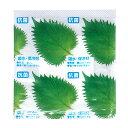 抗菌・吸水・保冷剤 アイスホールド抗菌大葉30 3000枚(3枚×1000)お弁当やお刺身に