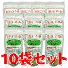 【送料無料】ガジュツ粉末 100g×10袋セット