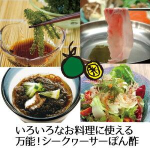 沖縄県産太もずく2.5kg・シークヮーサーぽん酢【送料無料】