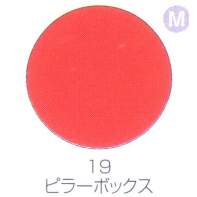 バイオスカルプチュアジェル カラージェル マット ピラーボックス 19【C】