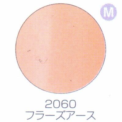 バイオスカルプチュアジェル カラージェル マット フラーズアース 2060【C】