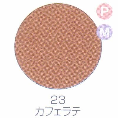 バイオスカルプチュアジェル カラージェル パール マット カフェラテ 23【C】