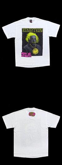 【送料無料】ステューシーアインシュタイングレイトマインド限定Tシャツ