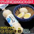 煮卵 いちど食べたらもうたま卵 旨塩 1袋(5ヶ入り) ちさと東 暑中見舞い/夏ギフト/お酒/贈り物/喜ぶ