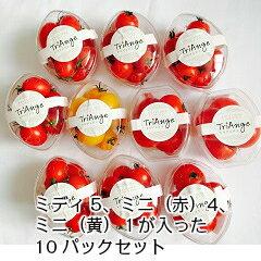 トマト ミニトマト 新鮮  生産者から直送  食べきりサイズのカップに入ったとってもお得な10パックセット。スイーツみたいなカップセットです。ミディ5パック、ミニ(赤)4パック、ミニ(黄)1パッククール便にて発送