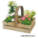 ●【送料無料】ガーデンボックス ...