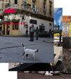 岩合光昭の世界ネコ歩き 第2弾 ブルーレイ 全3枚セット動物カメラマン・岩合光昭さんがかわいいネコたちをもとめて世界を歩きます。【楽ギフ_包装選択】
