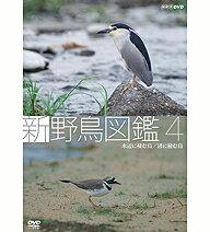 これが「動く野鳥図鑑」の決定版!500円クーポン発行中!新 野鳥図鑑 第4集 水辺に棲む鳥/渚に...