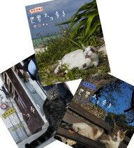 送料無料動物カメラマン・岩合光昭さんがかわいいネコたちをもとめて世界を歩きます。第5弾はシ...