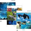 水族館−An Aquarium 沖縄・京都・名古屋港 全3枚セット