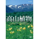 500円クーポン発行中!高山植物 〜花々が咲く名山を歩く〜