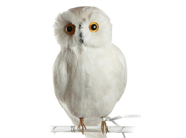 Owl White 【L】 フクロウ PUEBCO Artificial Birdsプエブコ アーティフィシャルバード111070【あす楽対応_東海】