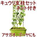 きゅうり支柱セット 11φ×180cm高さ ネット付き(3本を継いで組み立て式)きゅうりネット きゅうり支柱 園芸ネット 支柱 家庭菜園 野菜 ネット