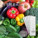 【スーパーSALE10%OFFさらにお得なクーポン配布中!】【酵素ペースト】 丹生酵素(植物性発酵食)お試し5包 nifu ダイエット ファスティング 腸活 腸内フローラ 健康 美容 酵素ドリンク [初回限定価格・送料無料]