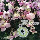 予約販売11月以降発送八重咲きミニシクラメングリーンティアラ9cmポット広原園オリジナルシクラメン
