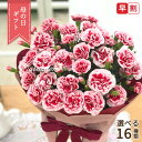 お母さんにお花を贈ろう!! ご紹介する商品は「選べるカーネーション16色」になります。 お届けするサイズは5号鉢になります。 【ご確認ください!!】 【お買い求めいただくお客様へ】 ◎お花を少しでも長くお楽しみ頂けるように、よりつぼみに近い状態でお届けするように心掛けております。 ◎生花ですので、咲き具合などにより色づき方などが画像と多少異なる場合がございますので予めご了承下さい。 ◎輸送中の事故を防ぐため、最小限の水分でお届け致しますので、到着後すぐにたっぷりとお水を与えて下さい。 ◎ラッピングの色や仕様は変更になる場合がございますのでご了承ください。 ↓↓↓必ずご確認ください↓↓↓ 【お支払方法について】 利用OK→クレジットカード・後払い決済 利用OK(利用制限あり)→前払い(コンビニ・銀行・郵便局) 利用NG→代金引換 ※4/23 (金)以降に前払い(コンビニ払い・銀行振込)をご指定の場合は自動キャンセルさせていただきます。 ※代金引換のご注文は自動キャンセルさせていただきます。 ※後払いの場合、決済審査に時間がかかり、母の日当日までにお届けできない場合がございます。 ※クレジット決済でも承認が得られなかった場合はキャンセルとなります。 【注文内容について】 注文後の注文者情報・送付先の内容修正は対応できません 注文前に内容をよくご確認ください。 数多くご注文をいただいた際、変更等のご連絡をいただきましても対応いたしかねますので何卒、ご容赦ください。 【配送について】 ◎特別仕様の箱でお届けになりますので他の商品と同梱できません。 ◎関東から関西まで送料無料となります。 ◎北海道へのお届けの場合は別途送料1,000円かかります。 ◎東北・中国・四国・九州へお届けの場合は別途送料200円かかります。 ◎下記エリアへのご注文は誠に勝手ながらキャンセルさせていただきます。 (北海道利尻郡・礼文郡・伊豆諸島・小笠原諸島・鹿児島県奄美市・大島郡(一部地域)鹿児島郡・沖縄県全域他一部地域) ◎生花の為、お届け先様がご不在が続く場合は、注文者様に転送させていただく場合がございます。 何卒ご了承下さいませ。 配送日の指定はお受けできませんのでご了承ください。