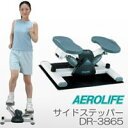 サイドステッパー DR-3865 エアロライフ