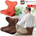 《クーポン配布中》 馬具マットプレミアムEX 座いす 座イス 在宅勤務 テレワーク 日本製 クッショ