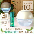 緑林の香り,みどりの香り,緑の香り,疲労回復,ストレス解消