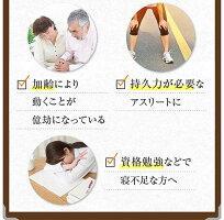 イミダペプチドイミダゾールジペプチドソフトカプセル【90粒30日分】サプリ日本予防医薬通販