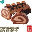 生チョコロールケーキ 17cm あす楽 送料無料 ギフト 送料込 ロールケーキ チョコレート バース