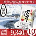 魚沼産コシヒカリ 塩沢産 10kg(5kg×2) 送料無料 お米 新潟...