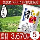 米物語 佐渡産コシヒカリ JA羽茂 5kg 送料無料 お米 ...