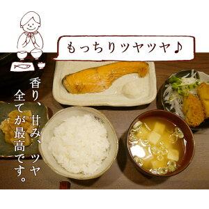 炊飯イメージ