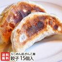 新潟名物 がんこ屋のこだわりジャンボ餃子 15個入り(5個×