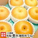 梨専門の農園、土田農園の手掛ける極上日本梨!一つ一つじっくりと樹上完熟することで生まれる...