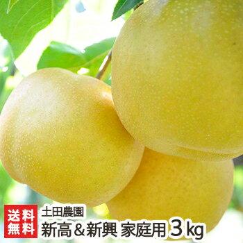 フルーツ・果物, 和梨  3kg(46)