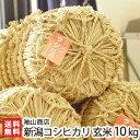 【30年度新米】 新潟産 コシヒカリ 玄米10kg 袖山商店...