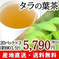 【送料無料】無農薬 タラの葉茶 タラ茶 20パック×3箱 カフェインフリー健康茶 お茶【注目成…