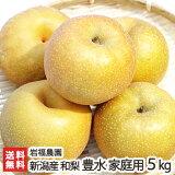 新潟産 岩福農園の日本梨 家庭用 豊水 5kg(8〜14玉)【豊水梨】【送料無料】