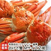 活本ズワイガニ「おけさ蟹」Mサイズ2尾有限会社ファクトリー童夢【送料無料】